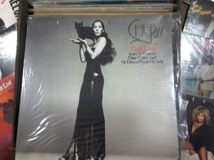 Cher Dark Lady | Des Moines Auction | Store It America